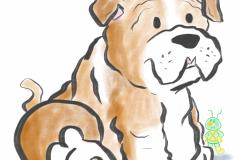 Bulldog080419